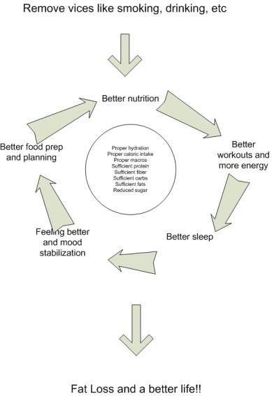 better-nutrition